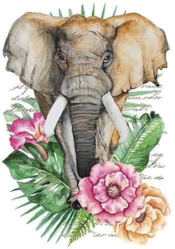 Bügelbild Elephant Summer