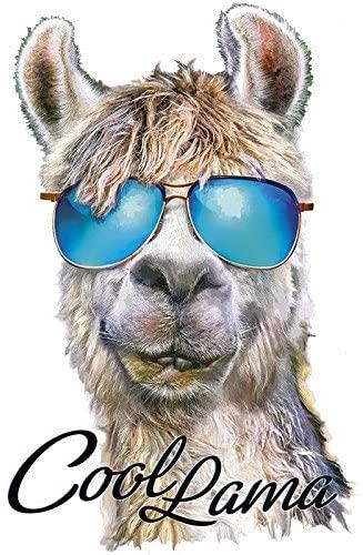 Bügelbild Cool Lama