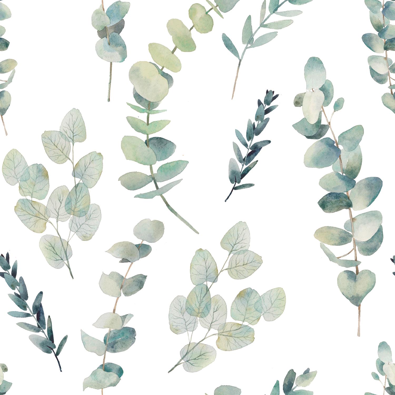 Baumwolljersey Eukalyptus